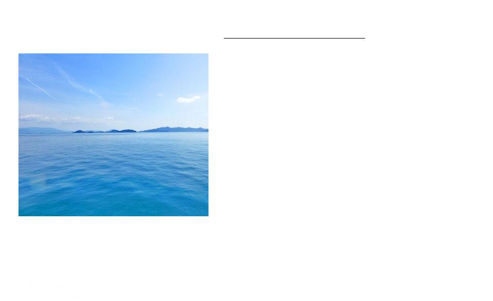 海のミネラルの結晶